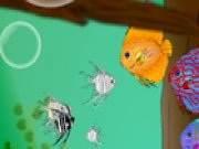 Find The Hidden Fish thumbnail