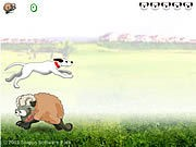 Sheep Jumper thumbnail