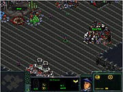 Thumbnail of Starcraft Flash RPG