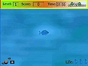 Play Fish thumbnail