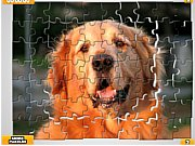 Pet Puzzles: Dogs thumbnail