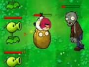 Thumbnail of Angry Bird VS Green Pig
