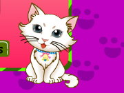 Thumbnail for Kitten Spot