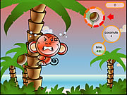Thumbnail for Cocoon Island