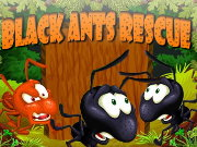 Thumbnail for Black Ants Rescue