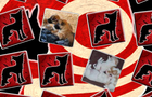 Thumbnail for Puppies Matching Game