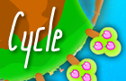 Thumbnail for Cycle
