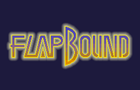 Thumbnail for FlapBound