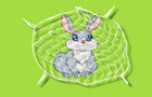 Rabbit Trap thumbnail