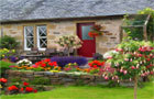Thumbnail of Cottage Garden Hidden Alp