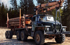 Timber Lorry Driver thumbnail