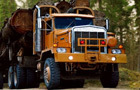Timber Lorry Driver 2 thumbnail