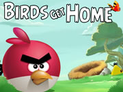 Thumbnail for Birds Get Home