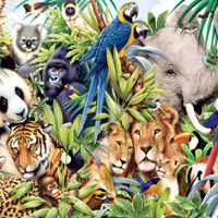 Thumbnail for Find the Spot-Jungle Animals