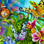 Thumbnail for Find the Spot-Butterflies
