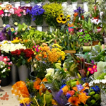Thumbnail for Hidden Objects-Flower Shop
