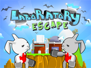 Roocket Laboratory Escape thumbnail