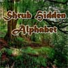 Thumbnail of Shrub Hidden Alphabet