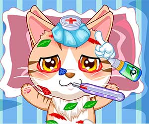 Thumbnail of Pet hospital doctor