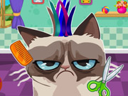 Thumbnail of Angry Cat Hair Salon