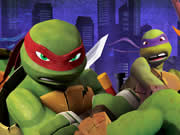 Thumbnail of Ninja Turtles Differences