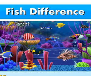 Thumbnail for Fish Difference