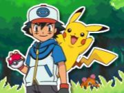 Thumbnail of Pokemon Catch Time
