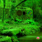Nature Green Forest Escape thumbnail