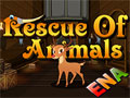 Thumbnail for  Escape Games Rescue Of Animals