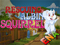 Thumbnail of  Rescuing Albino Squirrel Escape