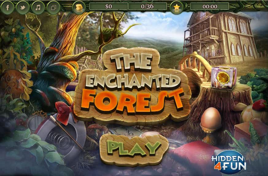 Thumbnail of The Enchanted Forest