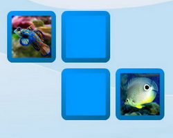 Thumbnail of Aquarium Fish Memory