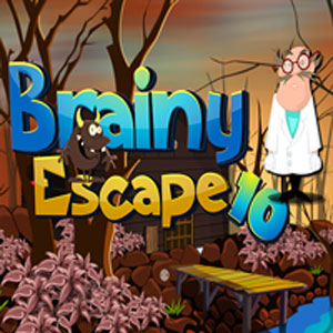 Thumbnail of Brainy escape 10