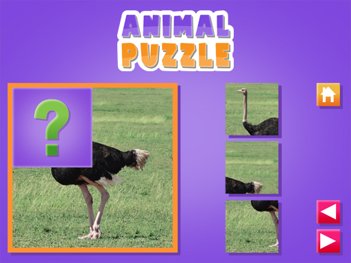 Thumbnail for Animal Puzzle