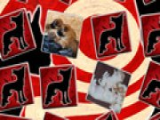 Thumbnail of Puppies Matching Game