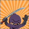 Ninja Fighter thumbnail