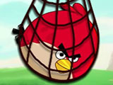 Thumbnail of Acool Surround Angry Bird